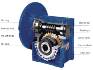 worm gearbox inner structure